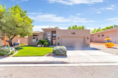 St George Single Family Home For Sale: 2410 E 90 S