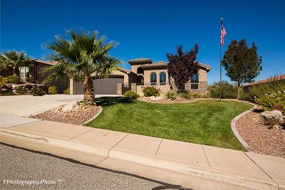 St George Single Family Home For Sale: 2602 W Desert Springs Rd