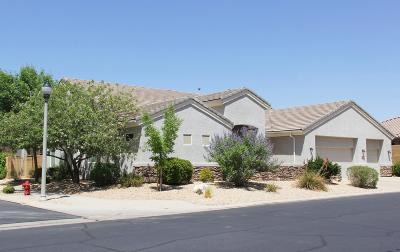 St George UT Single Family Home For Sale: $469,900