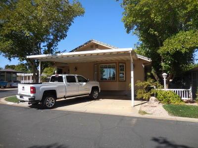 Washington Single Family Home For Sale: 180 N 1100 East #169 E #169a