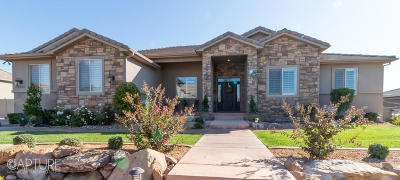 St George Single Family Home For Sale: 2505 S 2350 E