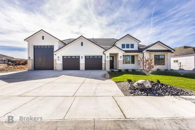 St George Single Family Home For Sale: 3362 E Barrel Roll Dr