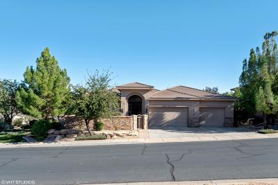 St George Single Family Home For Sale: 1719 S View Point Dr