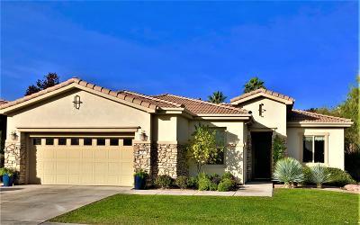 St George Single Family Home For Sale: 20 S Desert Springs Rd
