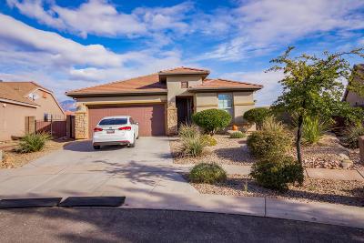 Washington Single Family Home For Sale: 1172 High Point Cir