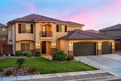 St George Single Family Home For Sale: 2916 E Crimson Ridge Dr