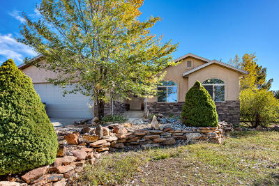 Dammeron Valley Single Family Home For Sale: 950 N Horsemans Park Dr