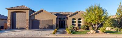 Washington Single Family Home For Sale: 75 E Antone Way