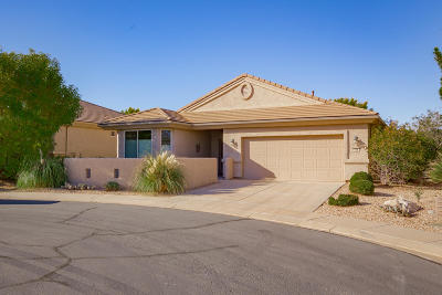 St George Single Family Home For Sale: 4568 Cinnamon Field Cir