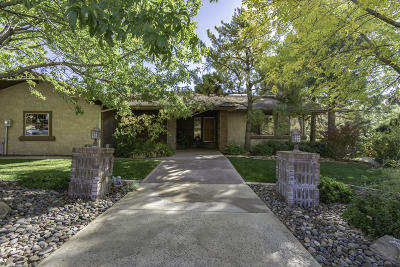 St George Single Family Home For Sale: 1005 Wesley Powell Dr