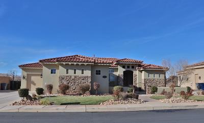St George Single Family Home For Sale: 2976 S Slate Ridge