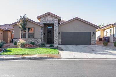 St George Single Family Home For Sale: 2176 E Colorado Dr
