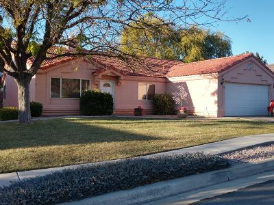 St George UT Condo/Townhouse For Sale: $235,000