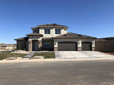 St George Single Family Home For Sale: 3315 S Lupine Dr
