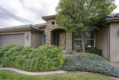 Washington Single Family Home For Sale: 855 W S Links Dr