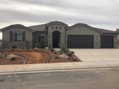 St George Single Family Home For Sale: 3206 E 2890 S