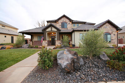 St George Single Family Home For Sale: 2208 E Pasture Dr