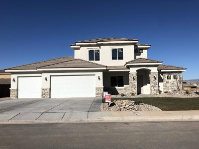 St George Single Family Home For Sale: 2793 E Hazel Dr