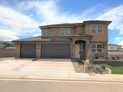 St George Single Family Home For Sale: 3250 E Holly Dr