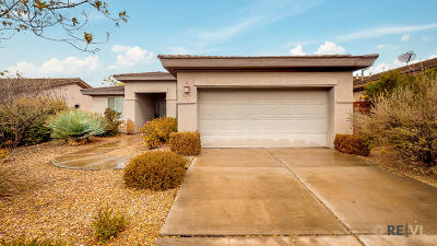 Washington Single Family Home For Sale: 3409 E Willow Springs Dr