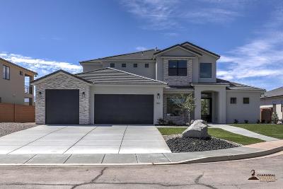 Washington County Single Family Home For Sale: 461 N 2300 W Cir
