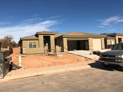 St George Single Family Home For Sale: 2699 E 430 N