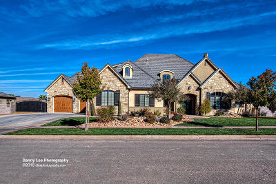 St George Single Family Home For Sale: 2349 3910 S