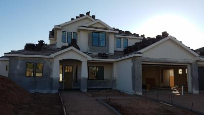 St George Single Family Home For Sale: 1837 S 2890 E
