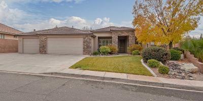 Washington Single Family Home For Sale: 880 E Lori Ln