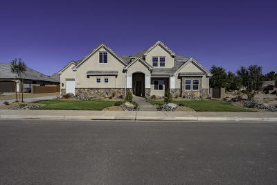 St George Single Family Home For Sale: 1372 Marigold Way