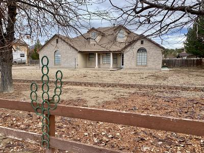 Dammeron Valley Single Family Home For Sale: 1068 N Horsemans Park Dr