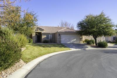 Washington Single Family Home For Sale: 684 N Monteverde Cir