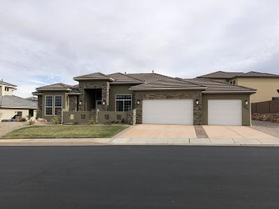 St George Single Family Home For Sale: 3823 S 2650 E