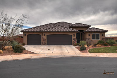 Single Family Home For Sale: 376 E Desert Gardens Ln