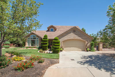 St George Single Family Home For Sale: 3775 Sugar Leo Rd