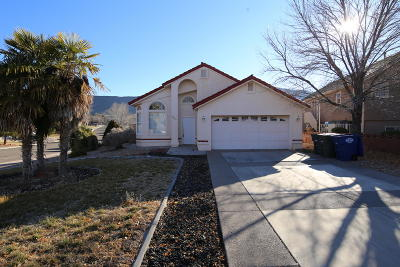 St George Single Family Home For Sale: 1421 W Pebble Creek