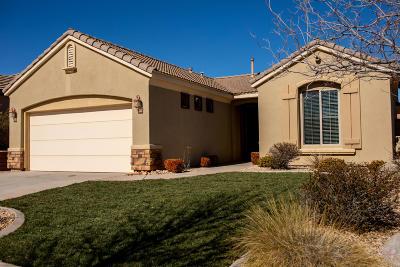 Washington Single Family Home For Sale: 2645 E Slick Rock Dr