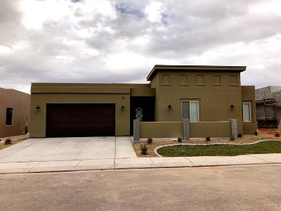 Hurricane Single Family Home For Sale: 3229 S 4900 W #LOT 210