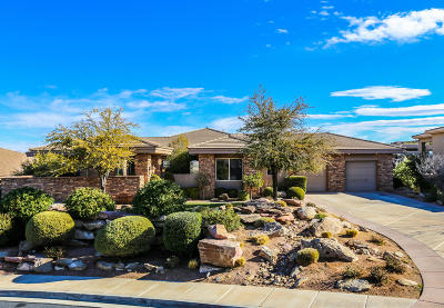St George Single Family Home For Sale: 1765 View Point Dr