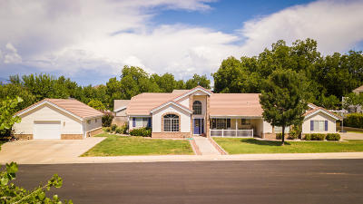 Hurricane Single Family Home For Sale: 365 S 800 W