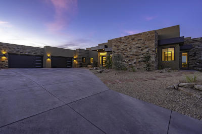 St George Single Family Home For Sale: 1998 S Pinnacle Cir