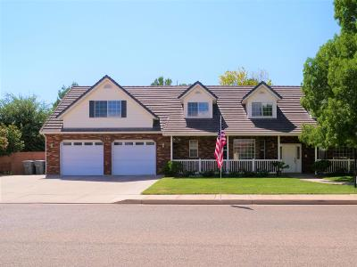 Santa Clara Single Family Home For Sale: 1849 N Red Mountain Dr