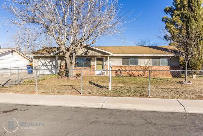 Washington Single Family Home For Sale: 397 E Rocco Rd