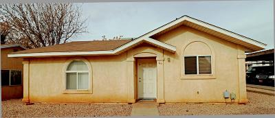 St George Single Family Home For Sale: 1840 W 1100 N #44