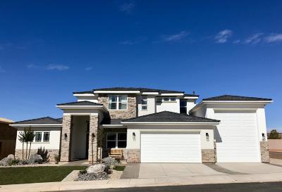 Washington Single Family Home For Sale: 1257 E Black Brush Dr
