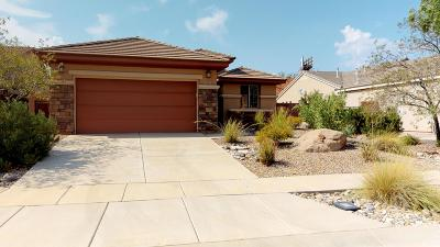 Washington Single Family Home For Sale: 2587 E Spring Canyon Dr