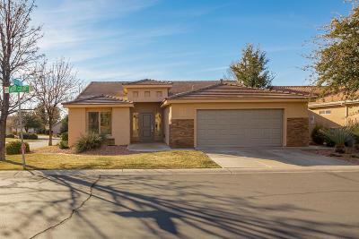 Washington Single Family Home For Sale: 777 W Hopi Ct