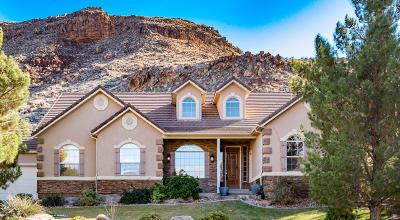 Washington Single Family Home For Sale: 1050 E Chippewa Way