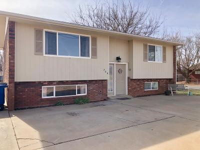 Ivins Single Family Home For Sale: 260 E 400 S