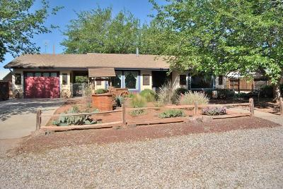 Ivins Single Family Home For Sale: 20 S Main St
